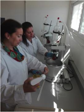Técnicos procesando muestras de medregal y mero. /GIA-ULPGC